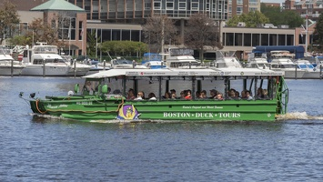403-3847 Charles River Cruise - Boston Duck Tours