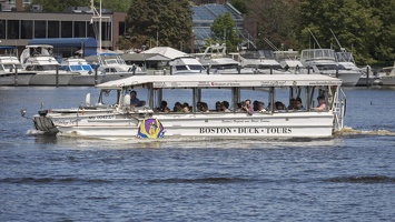 403-3854 Charles River Cruise - Boston Duck Tours