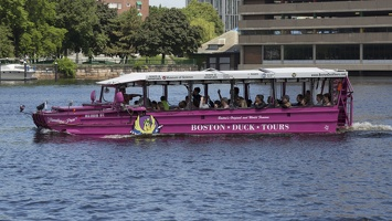 403-3868 Charles River Cruise - Boston Duck Tours