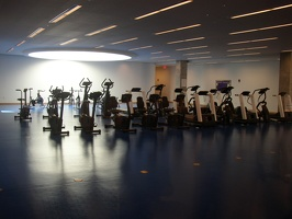 Stata Centyer - Exercize Room, next to the Alum Pool