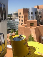 Stata Center - View of the Great Dome